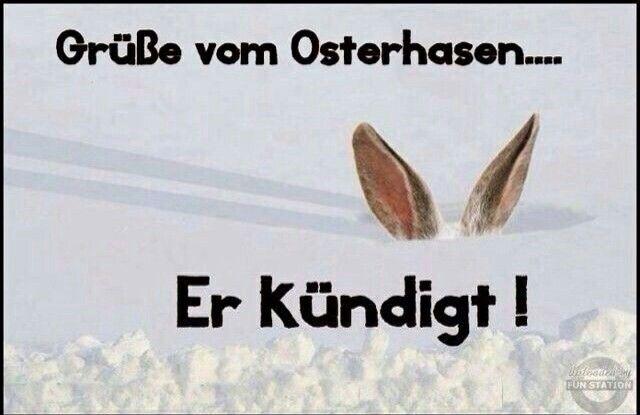 Pin Von Andrea Drost Auf Holidays Pinterest Ostern Witzig Und