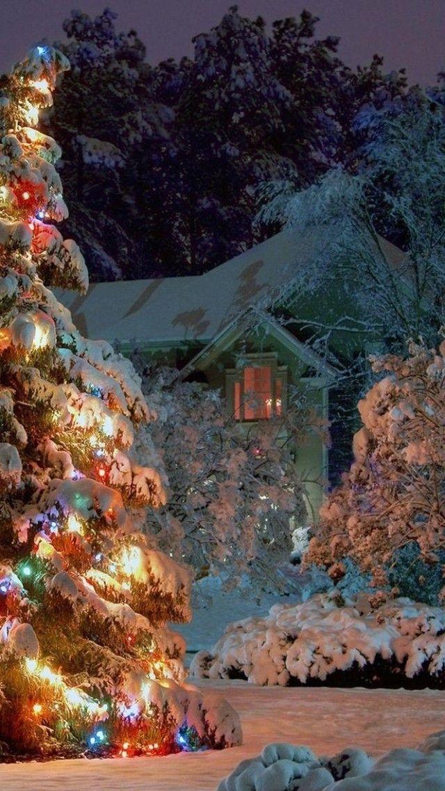 eine sch ne und friedliche weihnachtsstimmung fantasie. Black Bedroom Furniture Sets. Home Design Ideas