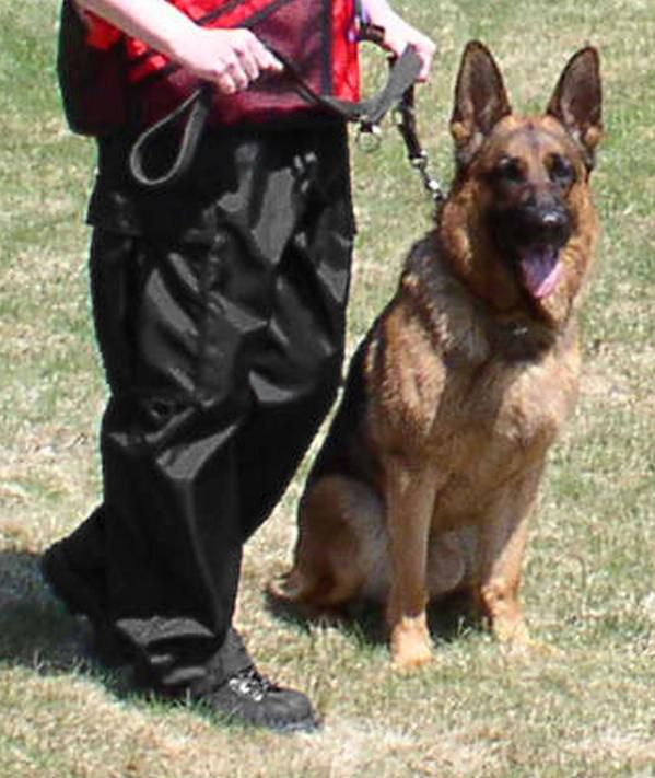 Handler Training Pants Agility Training For Dogs Schutzhund