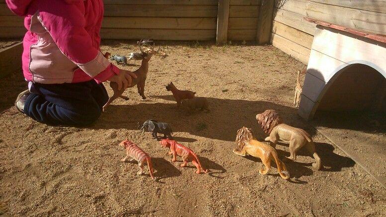 Racó dels animals al pati de la Llar.