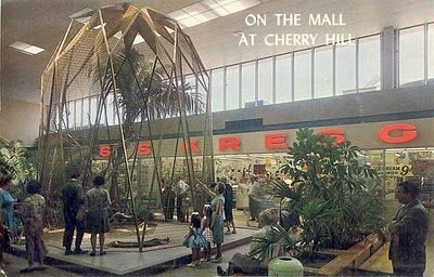 Remember Cherry Hill Mall Birdcage Cherry Hill Mall Mall