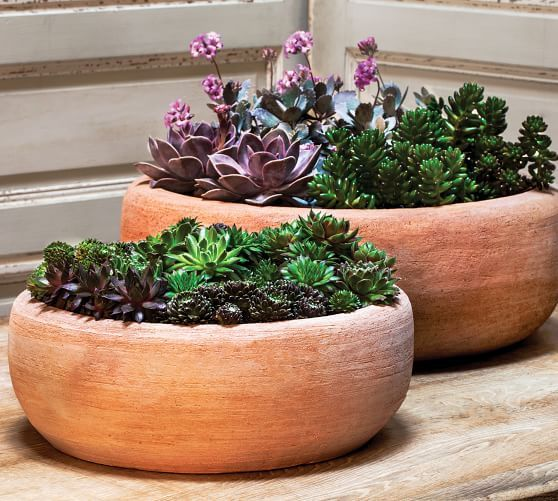 Pin By Nunu On Plant Terracotta Planter Planters Outdoor Planters
