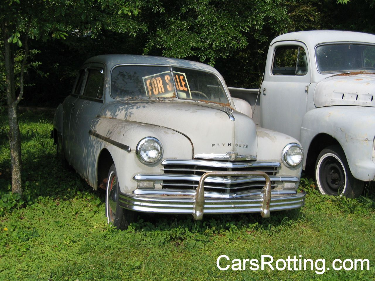 classic cars rotting    Filed under Plymouth by Joe .
