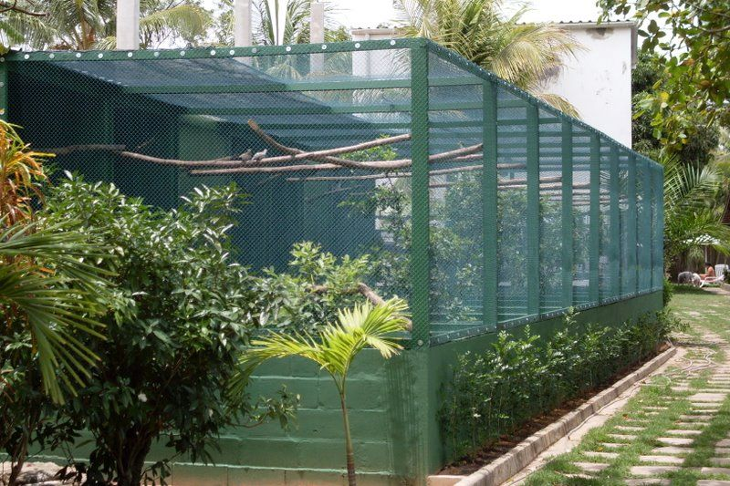 Aviary Designs | Cage and Aviary Ideas | Pinterest | Bird ...