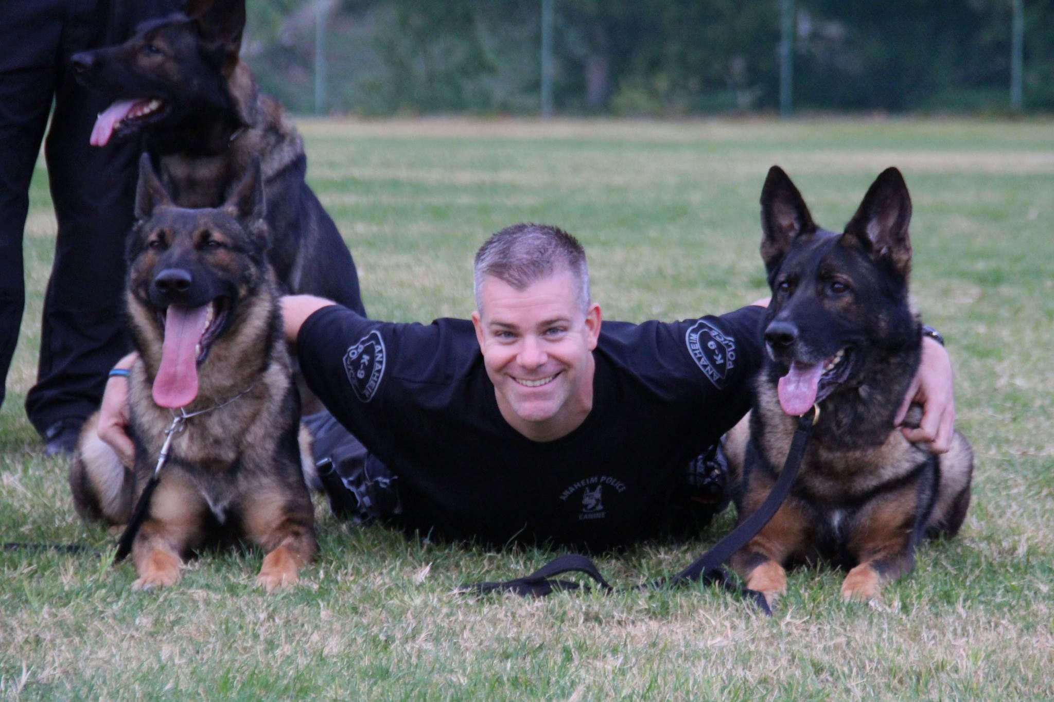 Officer Rj Young K9 Officer Bruno And K9 Guenther Military Working Dogs Police Dogs Working Dogs