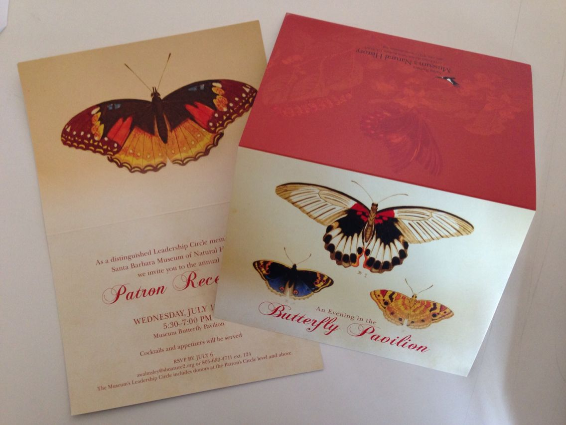 5x7 bifold invitation Butterfly theme - Warm colors Matte cover ...