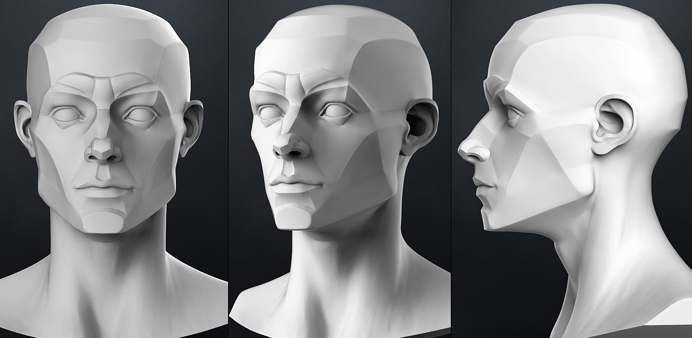 Download Planes of the head - Male free 3D model or browse