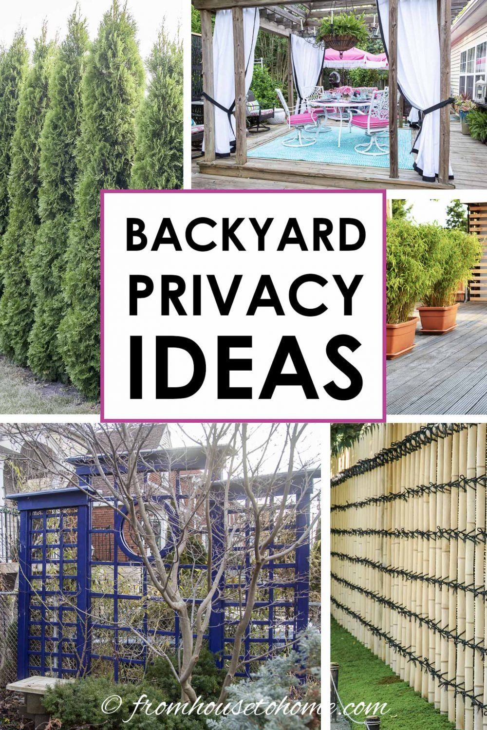 Backyard Privacy Ideas For Screening Neighbors Out Gardening From House To Home Backyard Privacy Privacy Screen Outdoor Outdoor Privacy