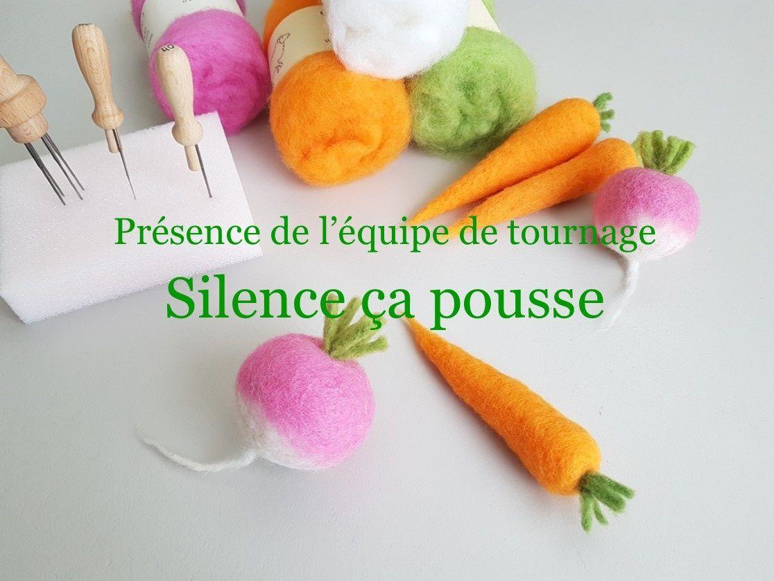 Atelier légumes feutrés avec Silence ça pousse ! - Ô Merveille !... le blog