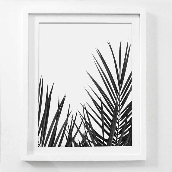 Black And White Palm Tree Print Tropical Art Framed Prints Wall Beach House Decor
