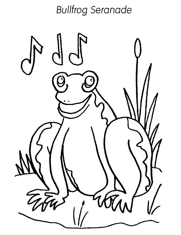 Bullfrog Serenade Coloring Pages Best Place To Color Di 2020