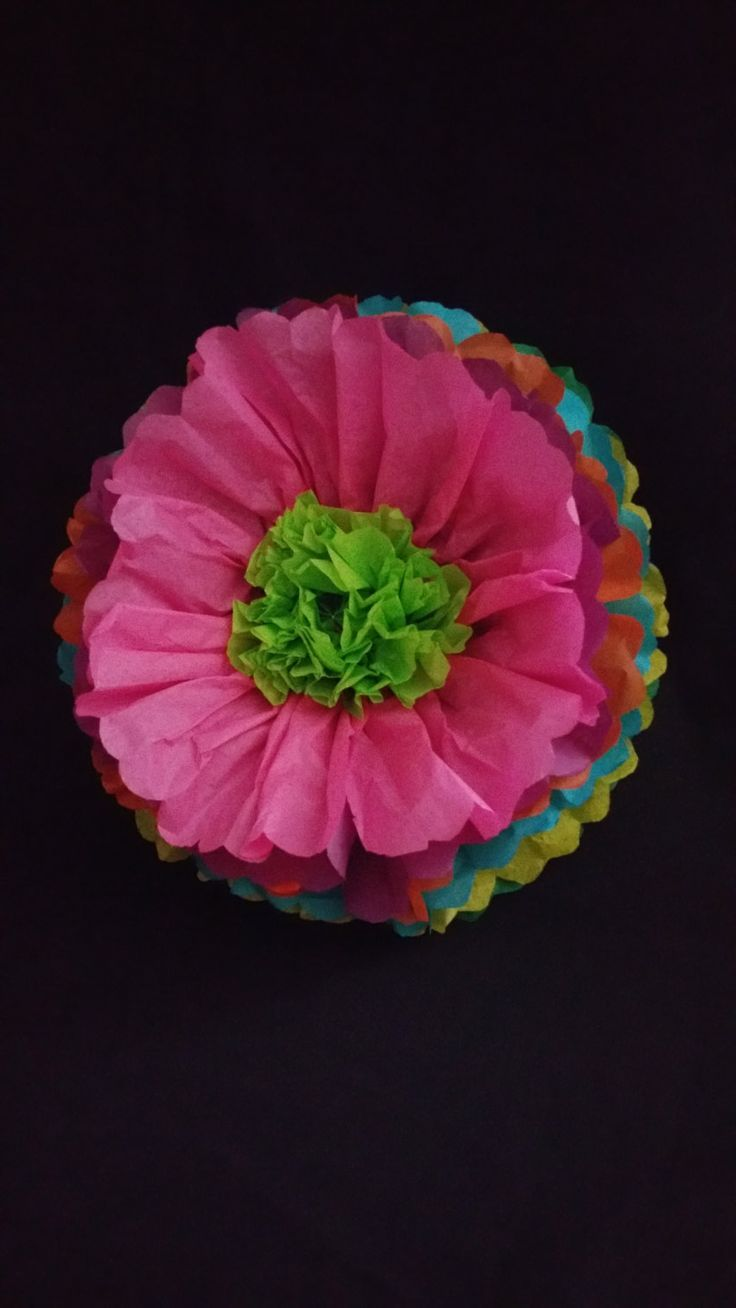 Cinco De Mayo Fiesta Large Tissue Paper Wall Flowers Table