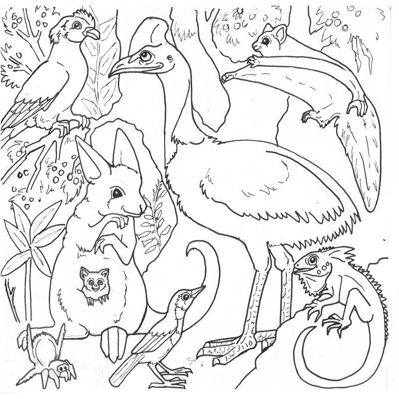 Coloring Pages For Rainforest Az Coloring Pages Coloring Pages Butterfly Coloring Page Bird Coloring Pages