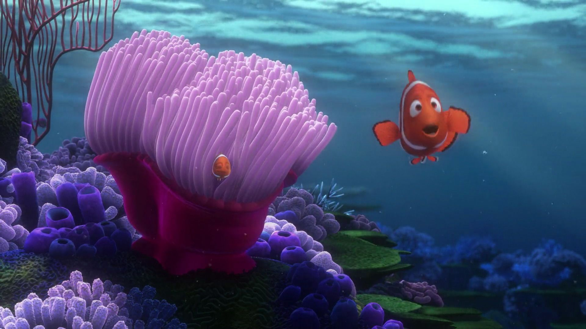 ced67dd178d59 Finding Nemo (2003) - Disney Screencaps.com