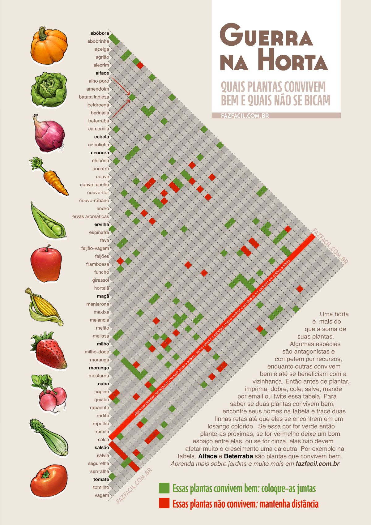 importancia de la agricultura organica pdf