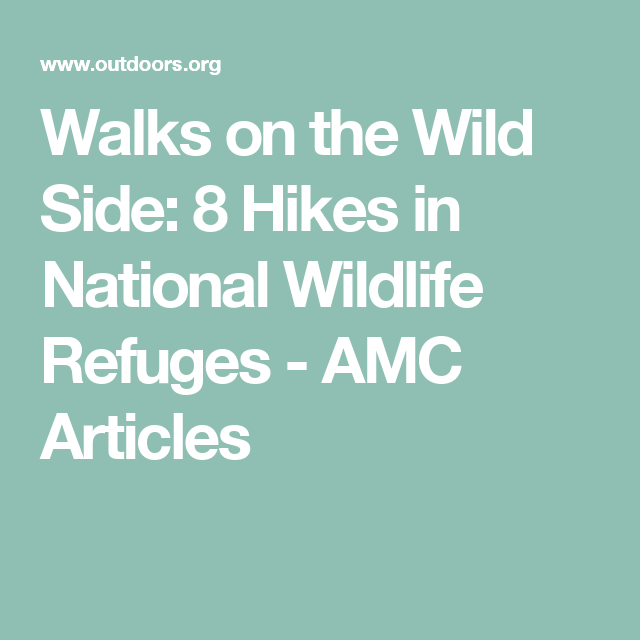 Walks on the Wild Side: 8 Hikes in National Wildlife Refuges - AMC Articles