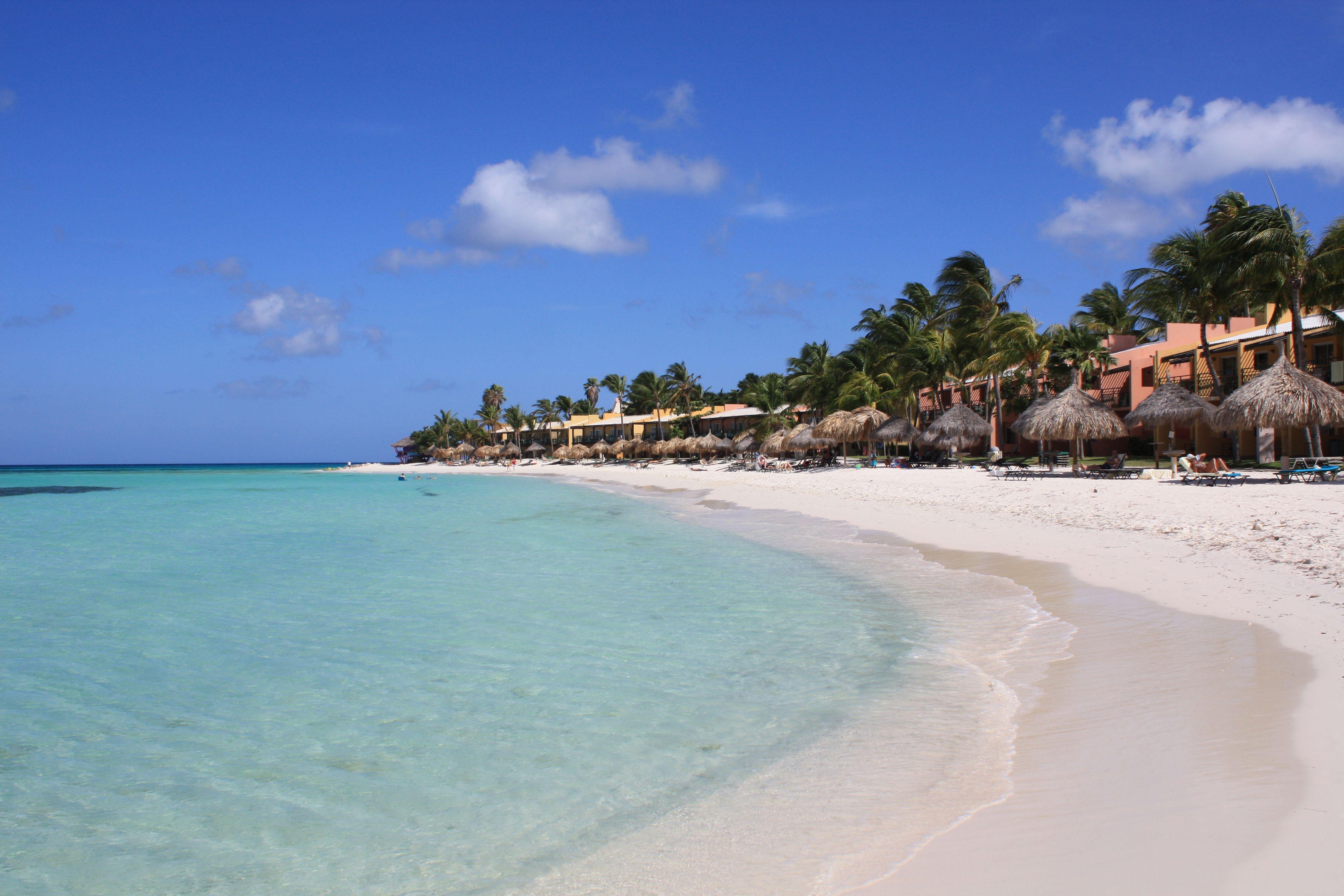 This is druif beach in aruba where the divi and tamarijn for Divi aruba and tamarijn aruba