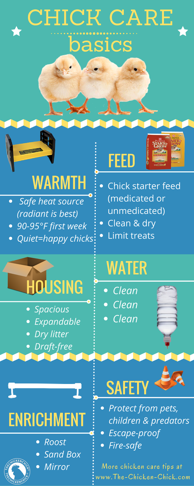 baby basics what you need to know to get started chicken