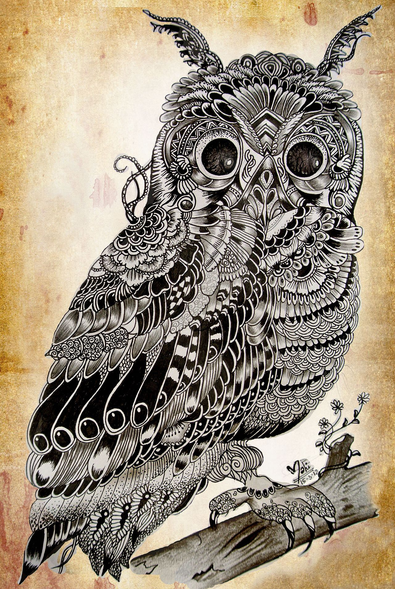 ian mcarthur inspired by mahi check out my artworks here tattoos pinterest owl artwork. Black Bedroom Furniture Sets. Home Design Ideas