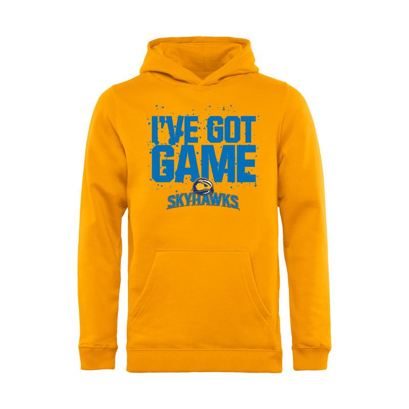 sale retailer e494d fb963 Fort Lewis College Skyhawks Youth Got Game Pullover Hoodie ...