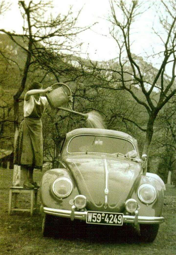 Working at the carwash
