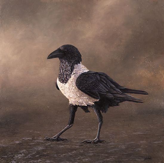 Pin On Tashi Crow Raven