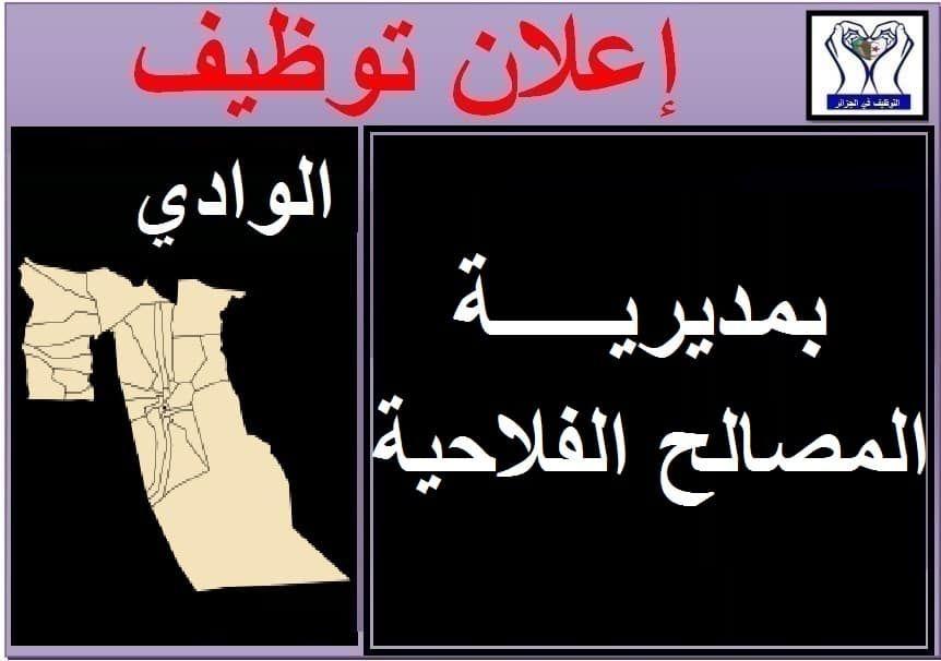 اعلان مسابقة توظيف بمديرية المصالح الفلاحية لولاية الوادي التوظيف في الجزائر Arabic Calligraphy Calligraphy Art