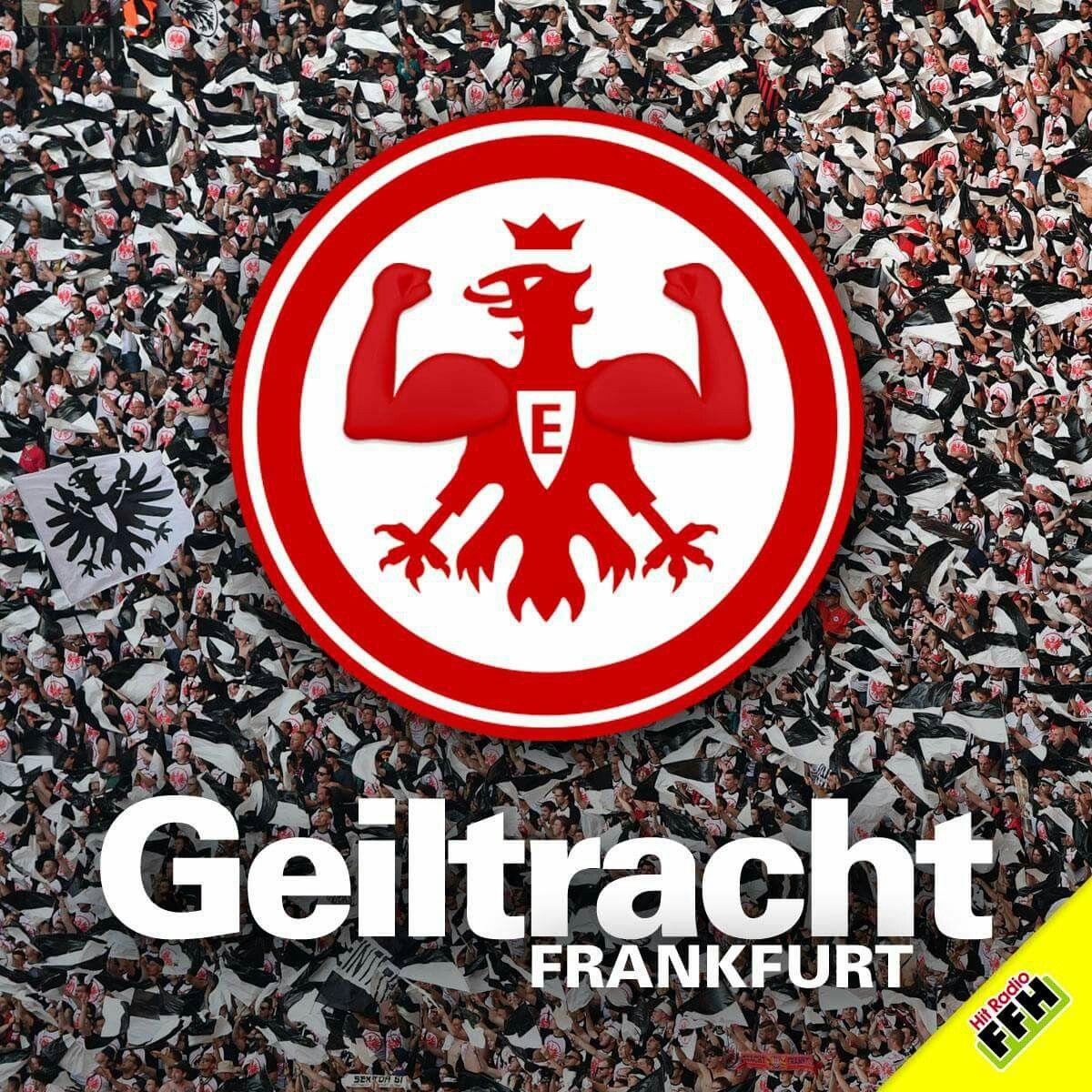 Pin Von Ralph Dufek Auf Eintracht Frankfurt Co Bundesliga Eintracht Frankfurt Lustige Gedanken