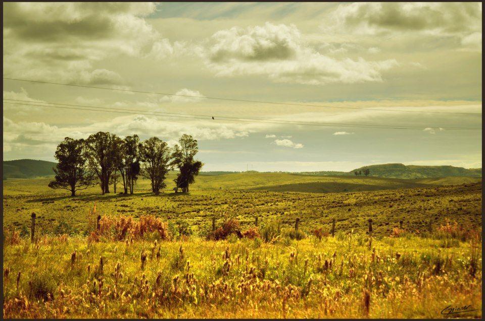 Paisaje De Campo Minas Uruguay Christian Grinner Nature Outdoor Farmland