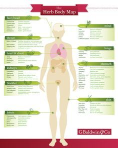 Specific herbs for specific parts of your body