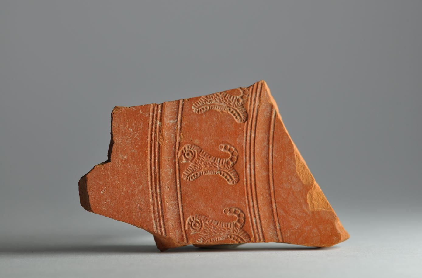 African red slip ware sherd with animal stamp 2