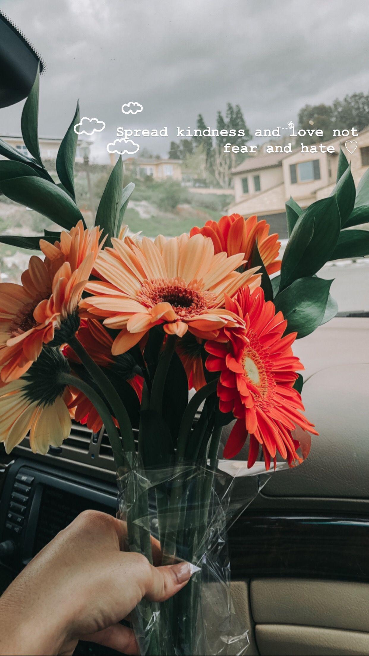 . . . . . #love #quotesforlife #flowerlover #quoteoftheday #kind #quotesdaily #quotestagram #quotesandsayings #quotes #quotestags #dailyquotes #quoted #thoughts #qotd #flower #flowerlovers #flowersofinstagram #flowergram #lifequotes #flowerslovers #kindess #kindnessmatters #quotesoftheday #flowerpower #quotestoliveby #actsofkindness #actofkindness #flowerstagram #quotesilove #bekind