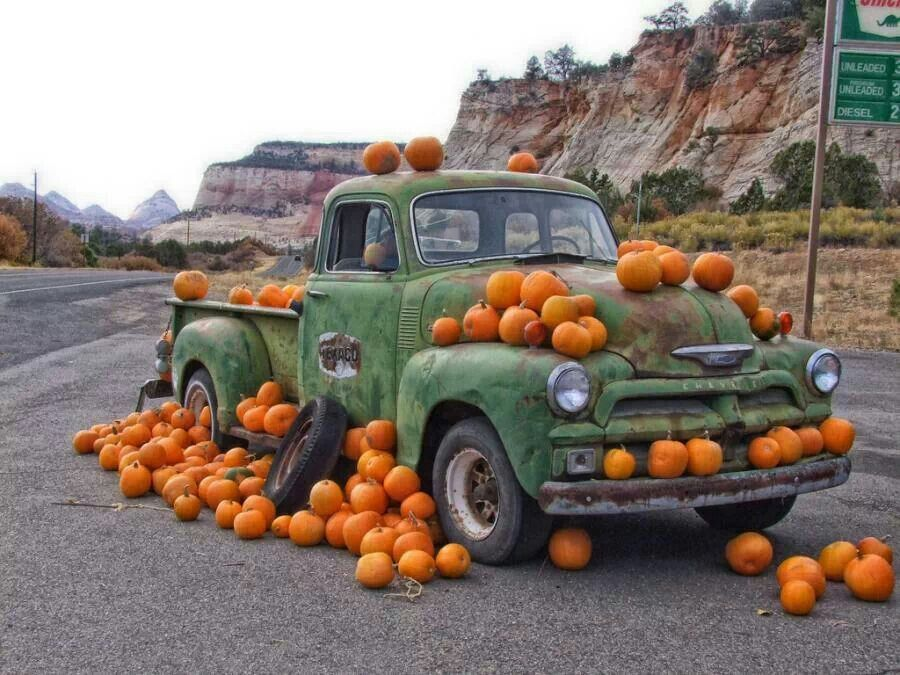 Old trucks and pumpkins. A great combo :) | Falling into Autumn ...