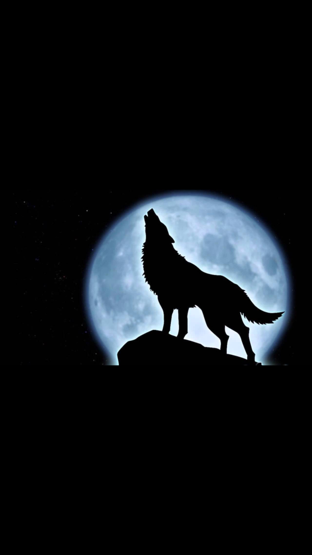 Pin By Ragan Dunn On Wolves Wolf Silhouette Wolf Howling At Moon Dog Tattoos