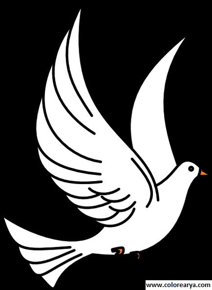 (son) Kuş Boyama Sayfaları