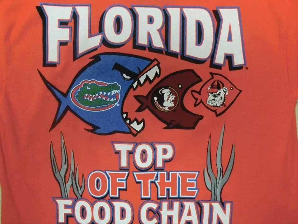 No Words Necessary Florida Gators Football Florida Gator Memes Gator Basketball