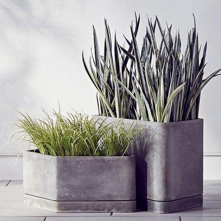 Hexagons Concrete Planter Small Gray Modern By Dwell Magazine