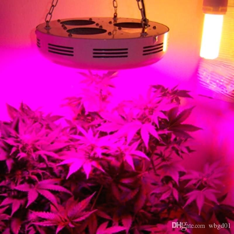 Taotronics Led Grow Light Review Best Led Grow Lights Led Grow Lights Grow Lights For Plants