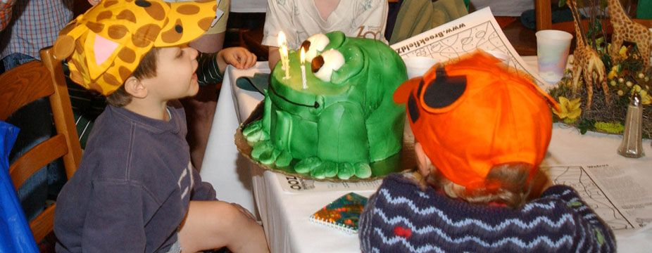 Brookfield Zoo Kids party venues, Jungle birthday party