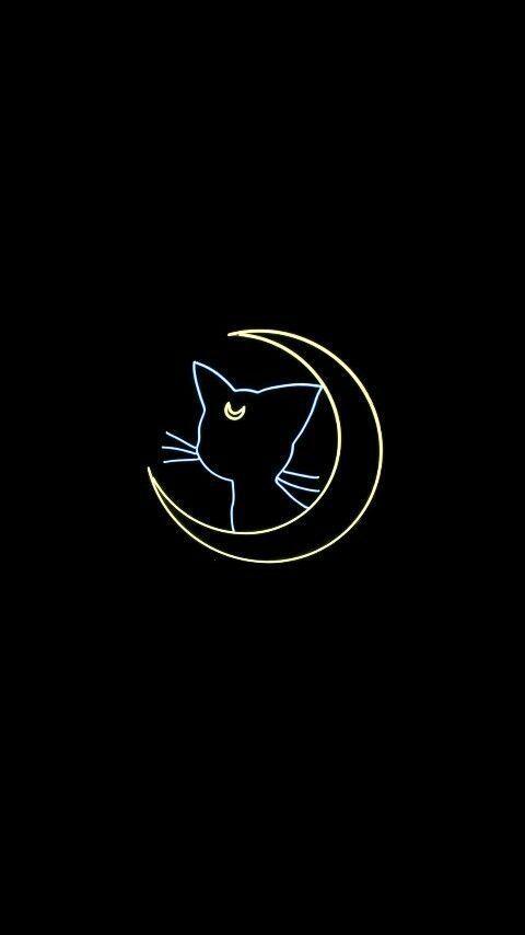 | cat wallpaper aesthetic black