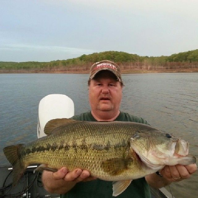 Check out our huge catch of the day! Lure in your own with lures from Missouri Archery http://www.missouriarchery.com/collections/crappie-lures