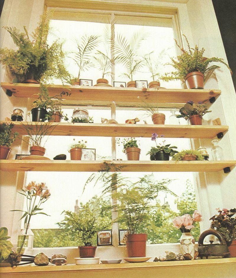 Kitchen Window Plants Window Plant Shelf Window Sill: Interior Design And Architecture