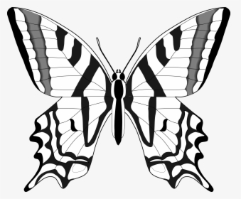 Butterfly Clipart Black And White Free Images Transparent Butterfly Clipart Black And White Hd P Butterfly Clip Art Butterfly Images Clipart Black And White
