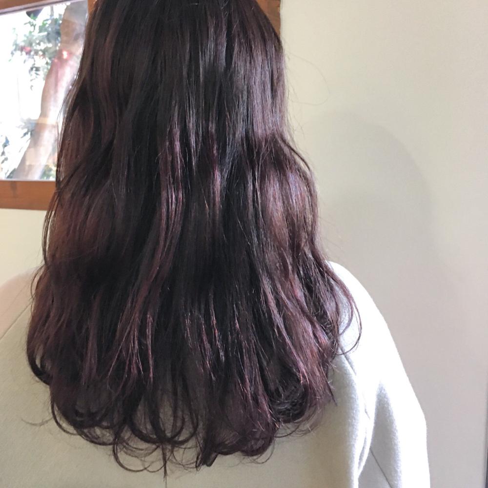 ブリーチなしでも可 パープルアッシュ で叶うおしゃれな髪色達
