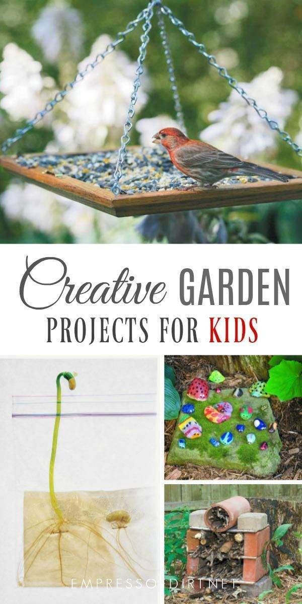 Gardening projects to do with kids