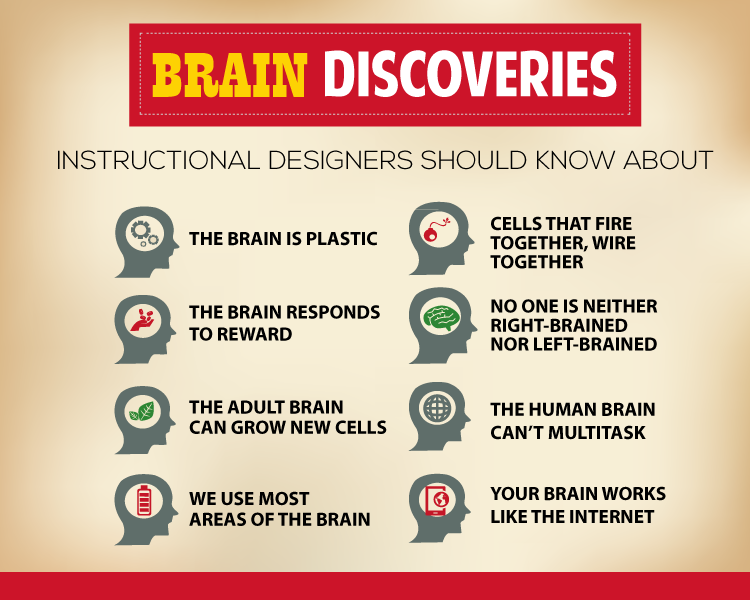 8 Brain Research Discoveries Every Instructional Designer Should