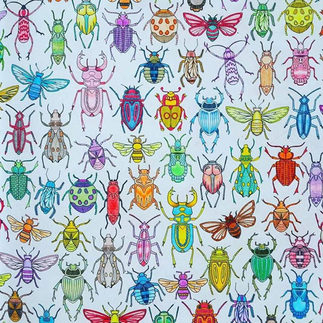 By Eugenaeugena Secret Garden Coloring Book Johanna Basford Coloring Insect Coloring Pages