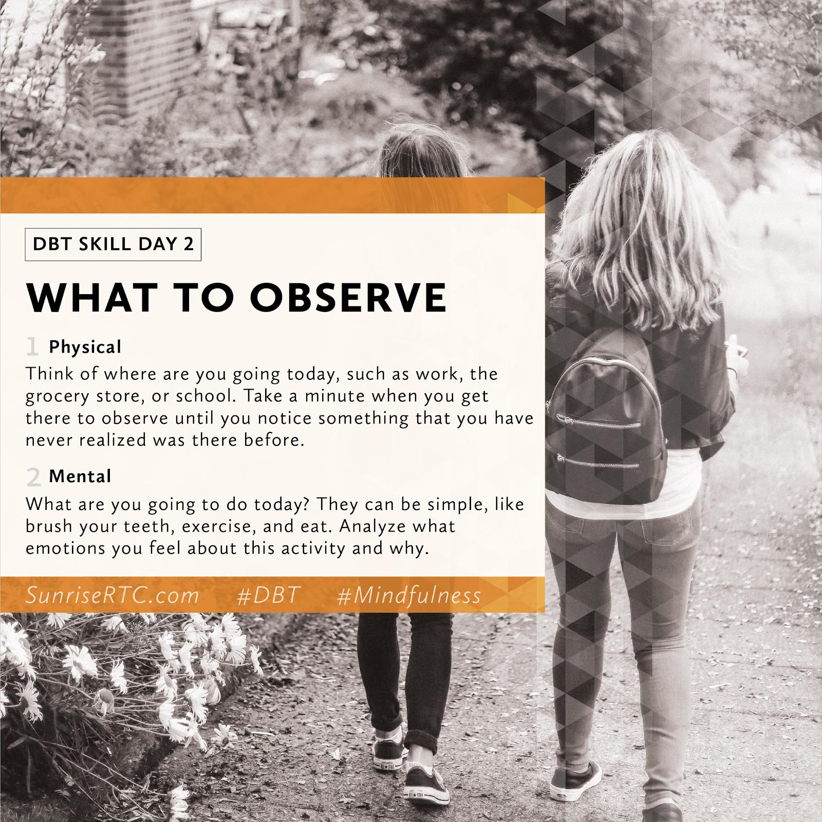 Dbtdailytip Dbt Observe