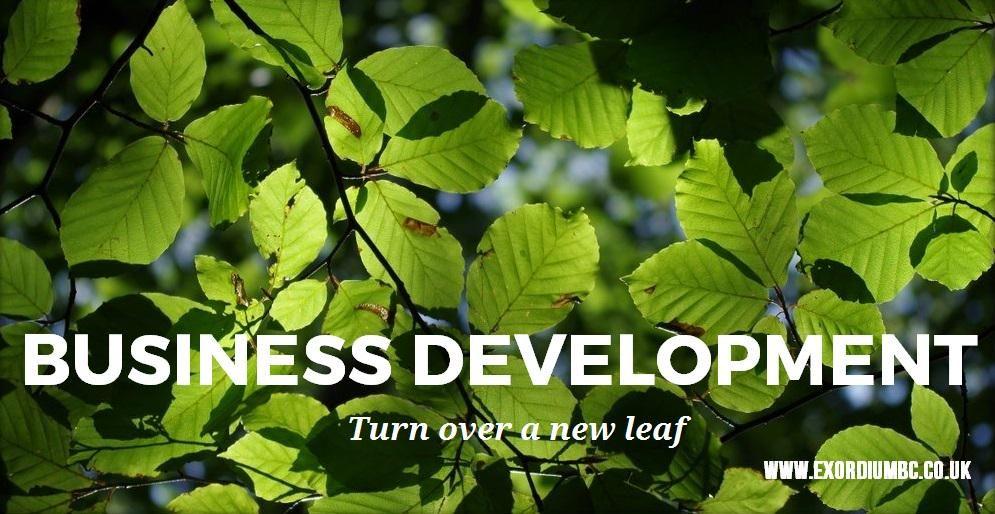 #businessdevelopment #turnoveranewleaf #businessintelligence