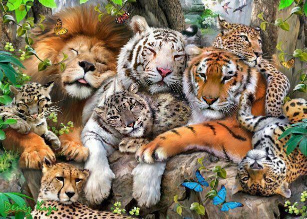 """""""Quando o homem aprender a respeitar até o menor ser da criação, seja animal ou vegetal, ninguém precisará ensiná-lo a amar seus semelhantes."""" Albert Schweitzer"""